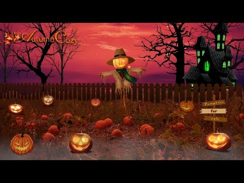 🎃PUMPKIN PATCH AMBIENCE: Autumn Night Sounds, Crunching Twigs, Burning Candles