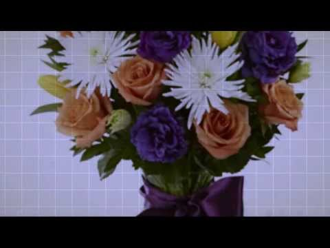 Florists & Flowers In Accord, Adams Center, Akron, Alexandria Bay, Allentown, Alplaus