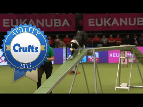 Agility - Large International Invitation Agility Competition (Part 1) | Crufts 2017