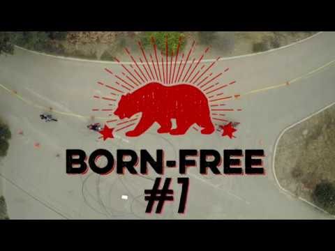 custom-bikes-and-culture---born-free-7---invited-builders---pt-2