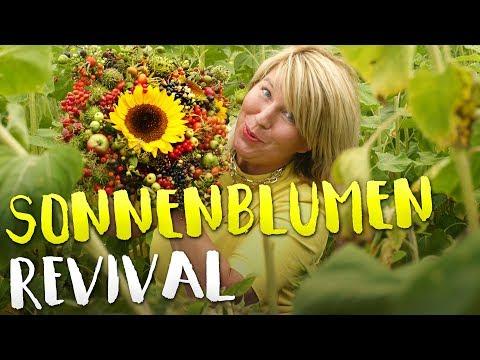 Imke Riedebusch   Sonnenblumen Revival