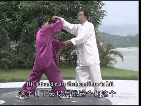 Traditional Shanxi Xingyi Quan Series Practical Combat Skills Of Hunyuan Sanshou Quan Watch Movie js