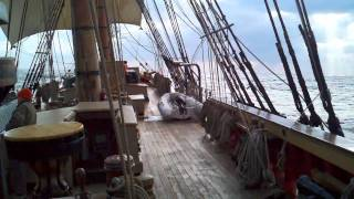 HMS Bounty unplanned stop at Bermuda
