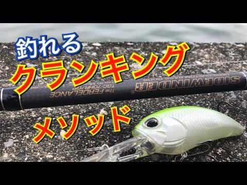 秋はこう釣るクランクパターンと大江川ディープクランクメソッド