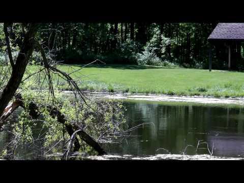 Harris Forrest Preserve in Yorkville Illinois