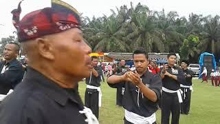 Gambar cover JOGET KOMANDO PSHT DALAM MENYAMBUT HUT RI 73... NKRI HARGA MATI.. DIRGAHAYU INDONESIA