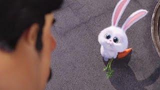 The Secret Life of Pets Official Trailer 2