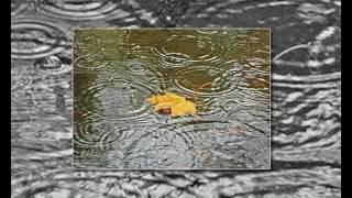 Видеосопровождение к песне Осенняя погода(футажи, видео для монтажа и визуальное сопровождение различных мероприятий., 2017-03-02T08:05:46.000Z)
