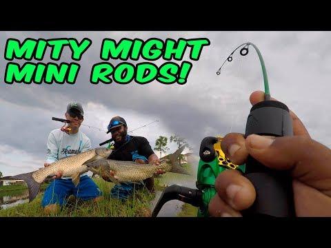 BIG FISH Double Ups!!! Mini Rods!