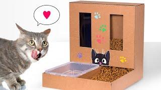 DIY Dispenser Makanan dan Minuman Kucing dari Kardus