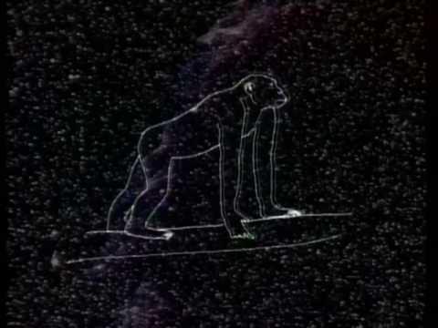 Carl Sagan explicando la evolución del Hombre