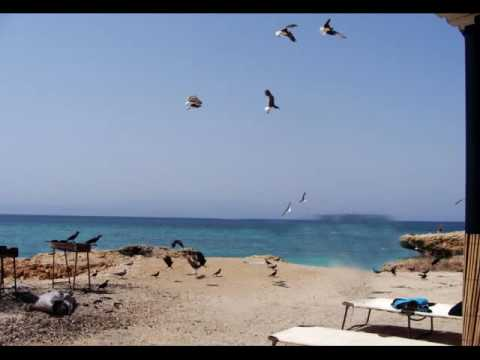 Moucha and Maskali Islands   Djibouti