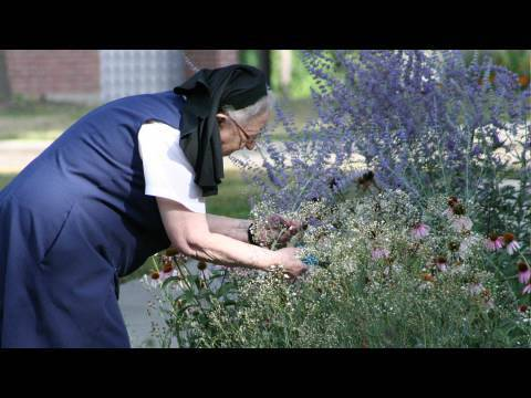 Nuns help researchers discover more about Alzhimer's