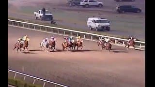 Quarter Horse World Record in 250 yards | Allens Cash (El Taliban)