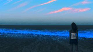 Download Dj Nemora - Serence Life (Deep Mix)