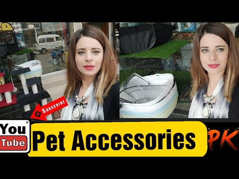 Eid Shopping 2021   Dog & Persian Cat Imported Pet Accessories   Wholesale Supplier Online Pet Store