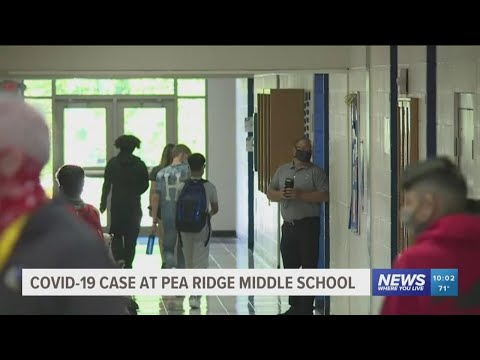 Pea Ridge Middle School Moves to Remote Learning for Wednesday Following Positive COVID-19 Case Repo