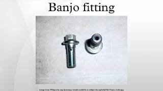 Banjo fitting