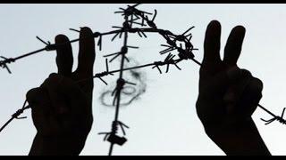 مدير مركز الدفاع عن الحريات:حالة صمت مريبة من قبل الأمم المتحدة تجاه حياة الأسرى