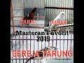 Masteran Kompilasi Burung Cililin Kenari Dan Gereja Tarung Pikatan(.mp3 .mp4) Mp3 - Mp4 Download