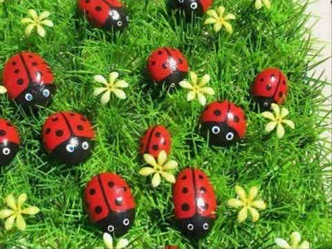Como arreglar mi jardin con poco dinero finest descubre - Como arreglar mi jardin con poco dinero ...