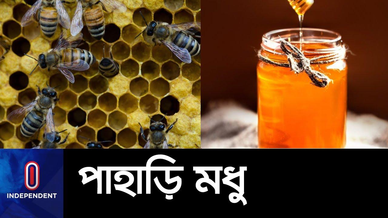 রাঙামাটিতে বাণিজ্যিকভাবে মধু উৎপাদনে সফল চাষিরা || Rangamati Honey