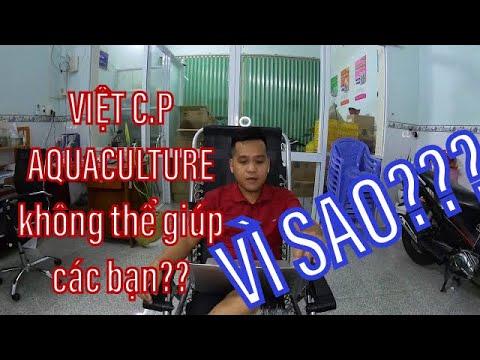 Livestreams vì sao Việt C.P AQUACULTURE không thể giúp các bạn tư vấn kỹ thuật nuôi được??