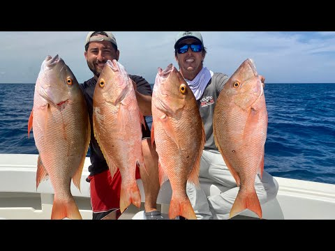 SNAPPER SMACKDOWN! Mutton Snapper Catch And Cook Italian Style!