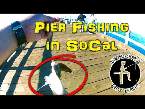 Pier Fishing in Southern California - Port Hueneme - Feb 2018