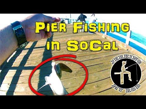 Pier Fishing In Southern California - Port Hueneme