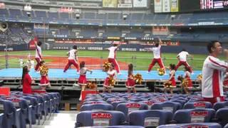 社会人野球日本選手権・日本 ...