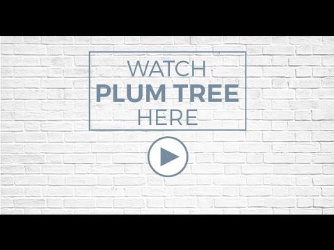 Plum Tree Apartments Martinez Ca Sequoia Equities Youtube