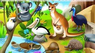 ЖИВОТНЫЕ АВСТРАЛИИ для детей от 1 до 3 лет (со ЗВУКАМИ). По методике Домана. Развивающий мультфильм