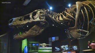 Science Museum offers a new exhibits and events