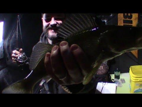 Hardy Pond Walleye - Michigan Ice Fishing