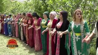 Hozan Şerwan & Hozan Cengiz Segawi Muhteşem Halay YENİ 2018
