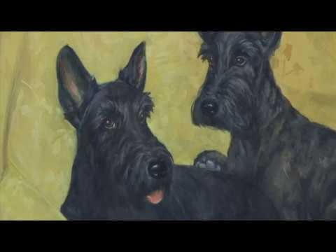 New York fetches a Dog Museum from YouTube · Duration:  1 minutes 37 seconds