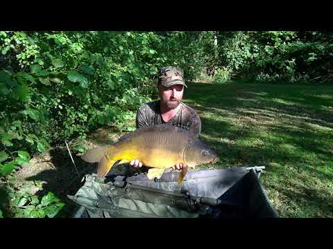 Carp Fishing In Winton Lakes 2018