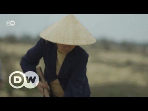 Wetterextreme In Vietnam   DW Deutsch