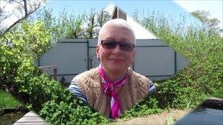 видео Забор из сетки рабицы на даче: виды, преимущества и особенности монтажа