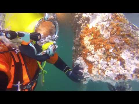 Commercial Diving- Subsea SBM Inspection
