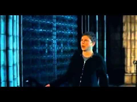 Andy Samberg cameo Nick   Norah s Infinite Playlist