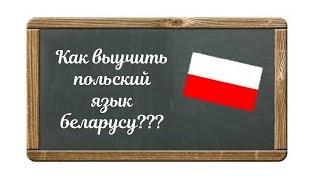 Как выучить польский беларусу. Курсы в Минске. Сергей Песецкий. Билингвизм.