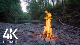 8 HOUR Crackling Campfire by the River - 4K Nature Soundscape with Birds Signing - Part #1