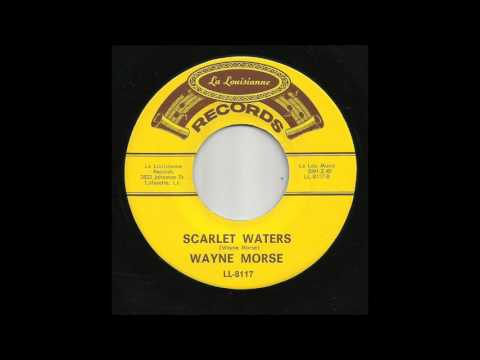Wayne Morse - Scarlet Waters