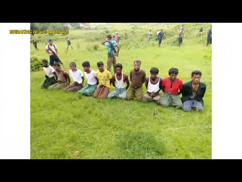 Reuters report on Myanmar massacre brings calls for independent probe