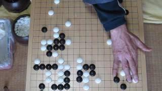 MR囲碁167 幻庵(先番)vs丈和 文政四年
