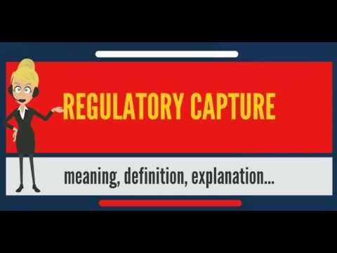 What is REGULATORY CAPTURE? What does REGULATORY CAPTURE mean? REGULATORY CAPTURE meaning