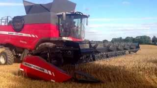 Brand New Massey Ferguson 9380 Delta combine on demonstration in the UK for the first time in wheat