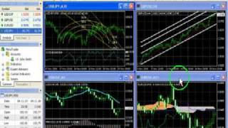 A FOREX Trading System Review